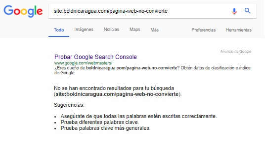 Sitio web no indexado por google